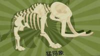 探索侏罗纪公园 考古学家沙漠挖掘 猛犸象的出现 新生代物种 恐龙再现 陌上千雨解说