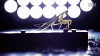 【100°C】微距下的昆虫(佳能65mm2.8)