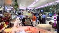 怀来县长飞商贸有限公司(音乐专题片2000年)-正大光