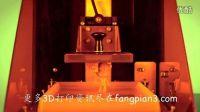 D2W商业级石蜡3D打印机演示