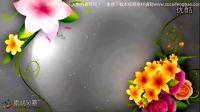 花藤视频素材免费下载网站_51_027