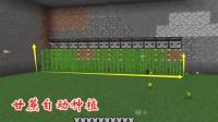 我的世界383: 我利用活塞和侦测器, 建成了一个甘蔗自动种植基地