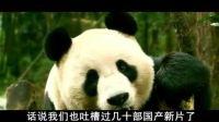 新片吐槽室 《让熊猫飞》