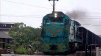 火车视频--宁芜线2园桥路拍车集