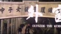窗外(林青霞第一部电影)