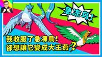 ★精灵宝可梦★我收服了急冻鸟! 为什么却希望它是一只大王燕? ★67★酷爱ZERO