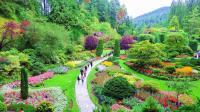 宝翠花园(布查德花园)上集 ~加拿大旅游系列(15)