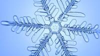 显微镜下看雪花形成的过程, 太美了!
