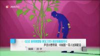 《JOJO 的奇妙冒险 黄金之风》放出特报宣传片 声优小野贤章、中村悠一等人参演