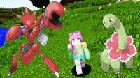 [宝妈趣玩]我的世界★神奇宝贝37: 5分钟最多能抓多少只宝可梦? Minecraft