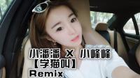 小潘潘 X 小峰峰 - 学猫叫(DJPout小辉 Electro Rmx 2018 V2)