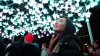 惊艳全球! 世界规模最大的悉尼灯光节, 错过再等1年!
