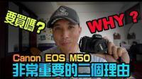 入门相机选佳能M50还是索尼a6300-6500?