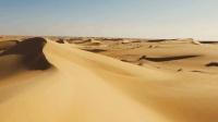 陕西厉害了: 全民治沙60年, 将600多万亩沙漠变绿洲!
