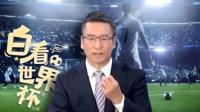 白岩松: 足球道路 中国应该怎样走?