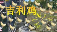 刺激战场: 落地碰见有人跟我抢吉利鸡! 头一次感觉到鸡比命都重要!