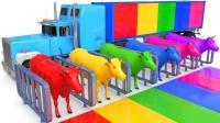 儿童学英语 颜色牛和运输街车儿童动物 教育视频 【 俊和他的玩具们 】