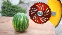 打草机的割草线威力有多大, 看老外将其对准黄瓜的下场就知道!