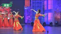 紫竹院广场舞——她们是如何把广场舞跳到精致耐看的? 请看专家金星怎么说!