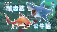 【Z小驴 NS】饥饿鲨 世界~锥齿鲨与公牛鲨! 可以吃大螃蟹了!