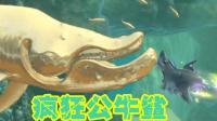 【Z小驴 NS】饥饿鲨 世界~公牛鲨疯狂刷新纪录!