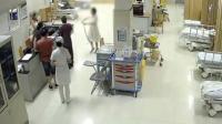 女子被咬后徒手抓蛇就诊 淡定填病例惊呆护士