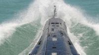海军舰艇实弹射击时, 被炸死的鱼怎么办? 海军老兵告诉你!