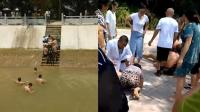 同伴不慎落水3学生下水施救 仅一人生还