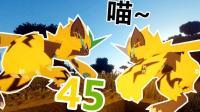 【XY小源 我的世界】1.12.2神奇宝贝 第七季 第45期 2只猫