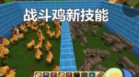 迷你世界: 30只战斗鸡VS50只狼 战斗鸡居然召唤爆爆蛋