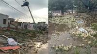 泗县突遭龙卷风袭击 房屋都被掀翻损失惨重