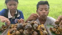 澳洲小哥  荒野求生 野外生存  生存哥  特别烹饪蜗牛咖喱蜗牛