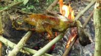 澳洲小哥  荒野求生 野外生存  荒野生活  变成野人 生存哥 原始技术制作烤鸭