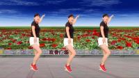 玫香广场舞《花开的时候你就来看我》16步鬼步舞, 好看易学