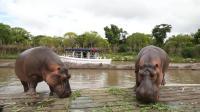 上海野生动物园【水域探秘】绝对不能错过的体验!