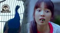 女生不受控制的吃草, 甚至浑身长满羽毛, 只因与孔雀做了交易?