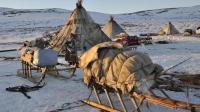 在零下50度生存, 主要的食物来源是鹿肉, 西伯利亚的神秘部落
