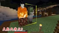 我的世界第二季113: 一个白大褂围着火堆不肯走, 大热天他在烤火