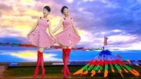 静儿广场舞《DJ明星》正面竖屏32步混合步子舞_01