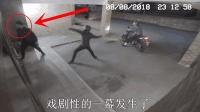 """3人入室行窃, 男子被同伴一砖头拍晕, 又见神奇的""""猪""""队友!"""