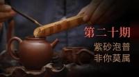 大圣说壶第20期: 泡普洱应该挑什么样的紫砂壶?