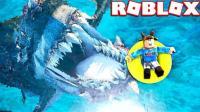 小飞象解说✘Roblox大白鲨模拟器 海底小纵队出动! 挑战海洋霸主巨齿鲨! 乐高小游戏