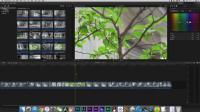 一起学Final Cut Pro! 看完这个视频不怕学不会!