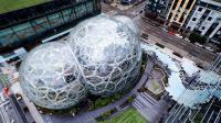 三个球耗资200多亿, 把热带雨林搬进办公室, 土豪真是有钱任性!