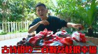 我来体验一下苏轼笔中的惠州人! 一天能吃三百颗荔枝嘛?