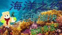 【我的世界解说】  海洋之约  挖珊瑚块! 如何养活?(26)