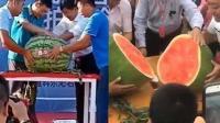 内蒙古一颗西瓜竟卖了51000元 打破日本43000元的世界纪录