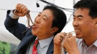 韩国美食家到香港吃早餐, 目不转睛看着中国人吃, 馋得直吧唧嘴!