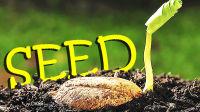 【屌德斯解说】 模拟种子 神奇的种子变成各种样子疯狂传播