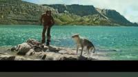 """《阿尔法: 狼伴归途》""""荒野世界""""预告片!"""